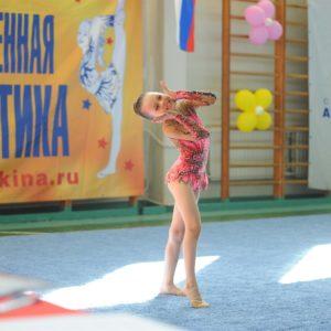 Художественная гимнастика — Приморский район